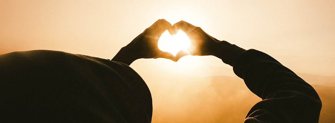Hjärta & kärl